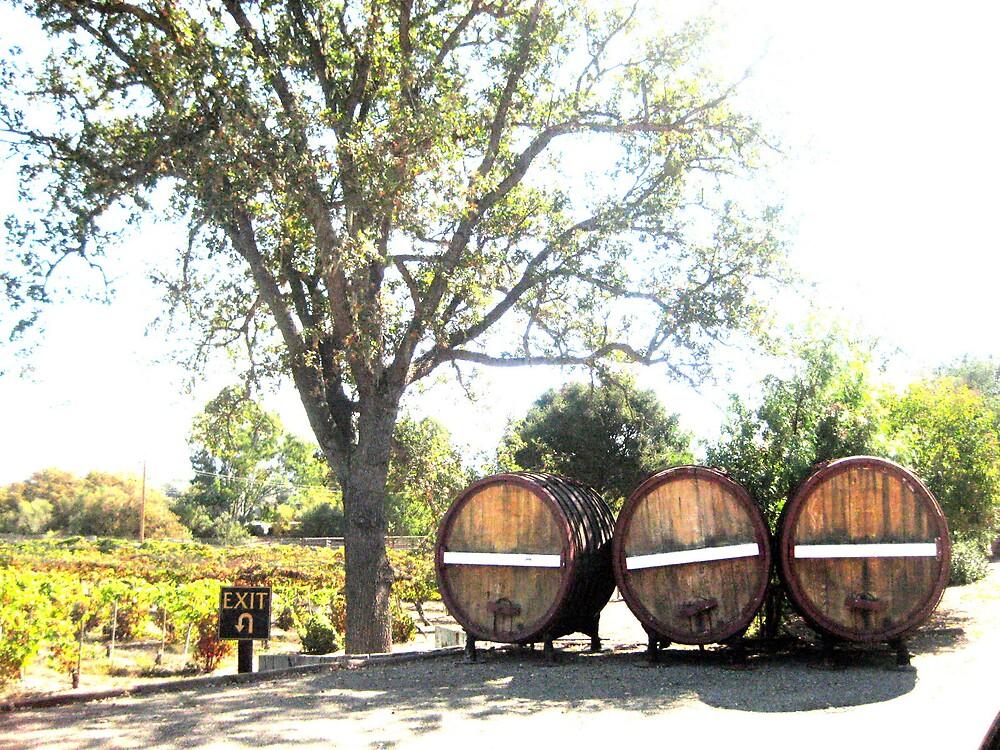 Lincourt Wine Barrels  by SamanthaJune
