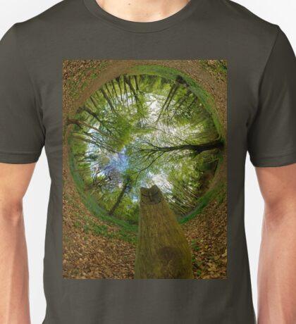 Butterfly Sculpture in Prehen Woods, Derry (Sky-in) T-Shirt
