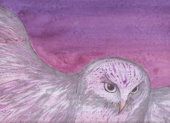 Night Owl by mishelley