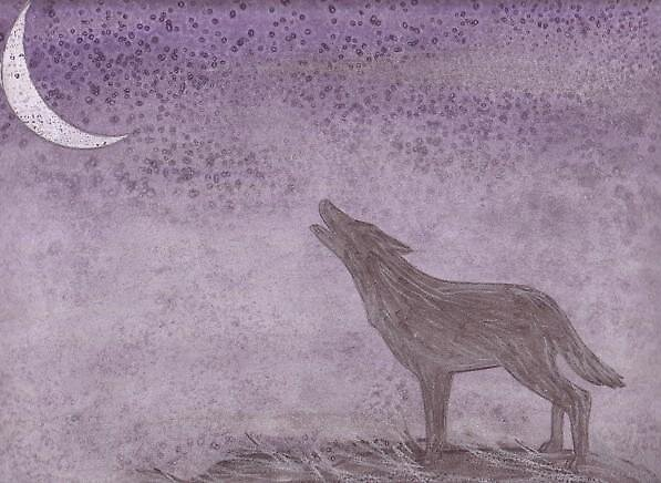 Lone Wolf  by mishelley