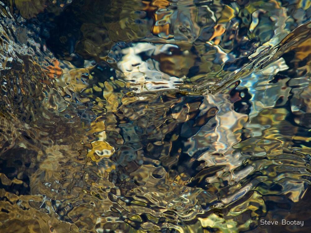 Eagle's Domain by Steve  Bootay