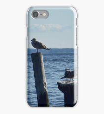 Gulls iPhone Case/Skin