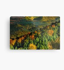 Colorful autumnal forests in Alsace, France, seasonal specific, natural landscape Metal Print