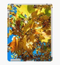 Vivid autumnal colors of leaves in the park, Strasbourg, France iPad Case/Skin