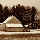 Country Barn by Grinch/R. Pross