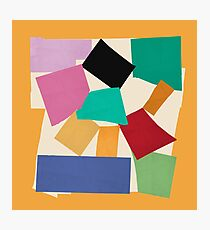 The Snail (Matisse Cut Out)  Photographic Print