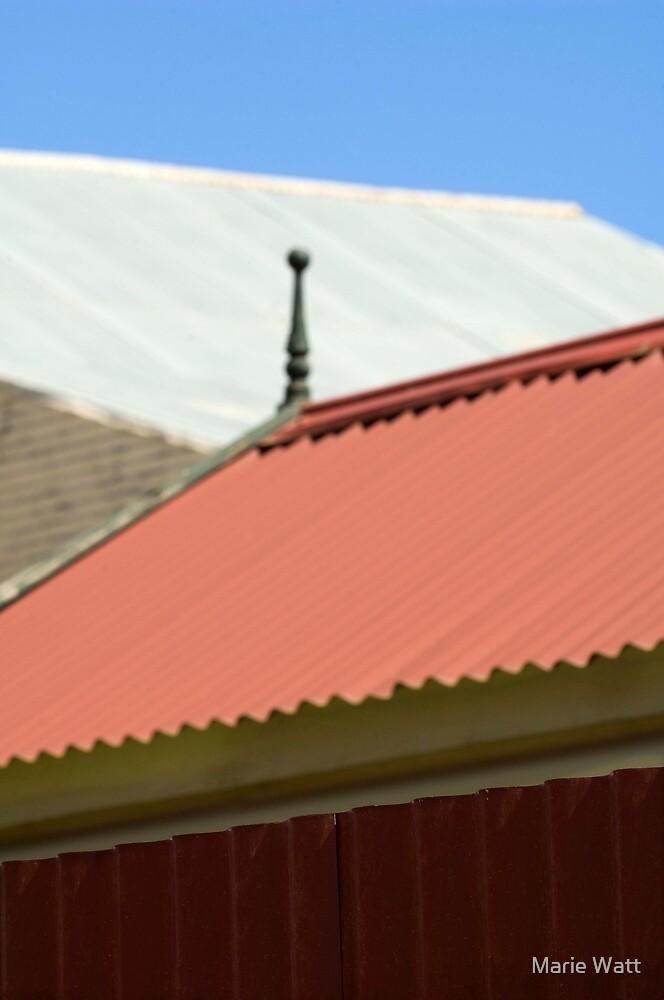 Rooflines by Marie Watt