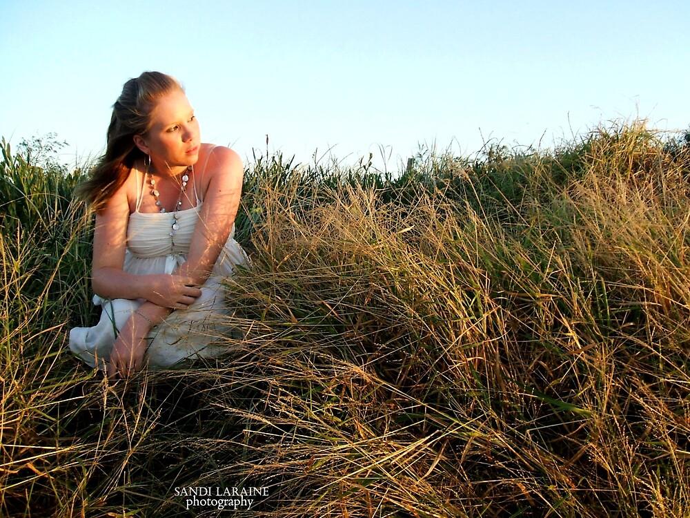 Summer Breeze II by Sandi Laraine