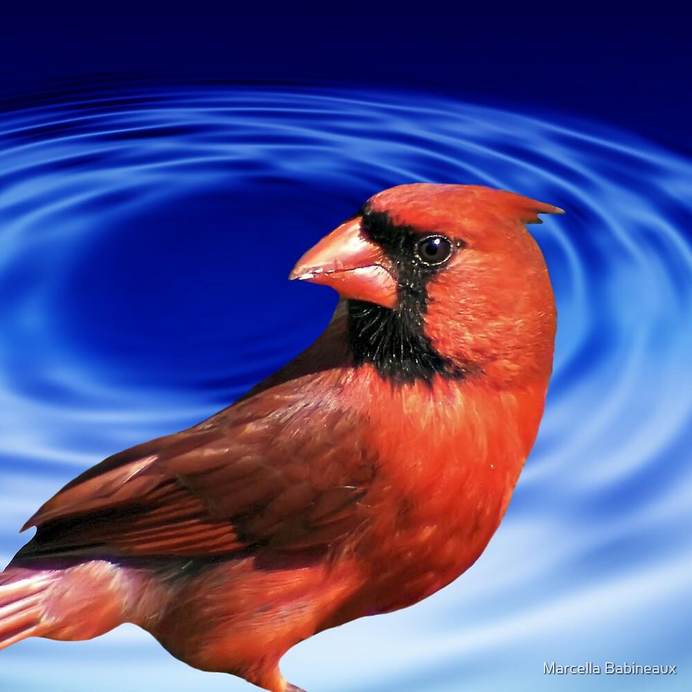 Cardinal by Marcella Babineaux