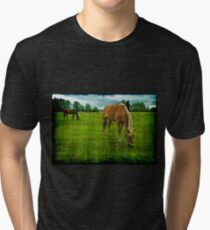 Horses Grazing on Meadow Grunge Tri-blend T-Shirt