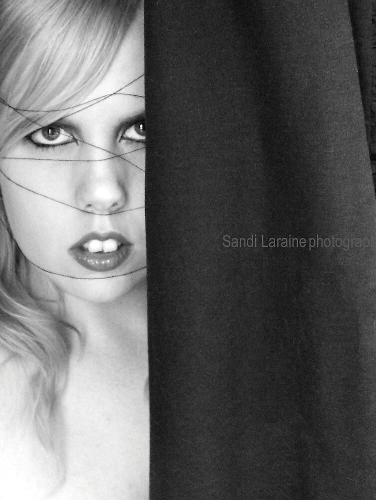 Shadow by Sandi Laraine