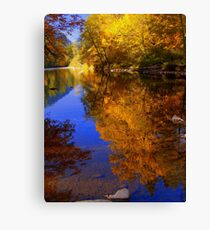 silent reflection Canvas Print