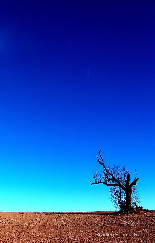 """""""Alone"""" by Bradley Shawn  Rabon"""