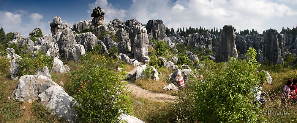 Kunming Stone Forest by MiImages