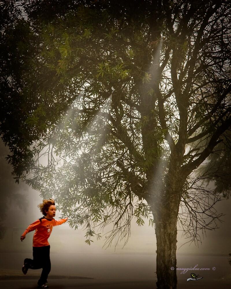 Running In The Mist by Maggiebee