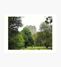 A Walk to Blarney Art Print