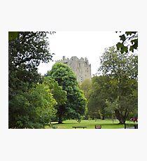 A Walk to Blarney Photographic Print