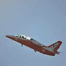 Albion Park Airshow 2017-VH-DZJ banked flypast by muz2142