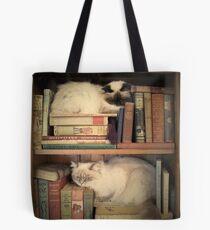 Bibliothek Katzen Tote Bag