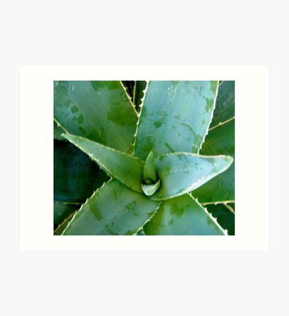 Green plant Art Print