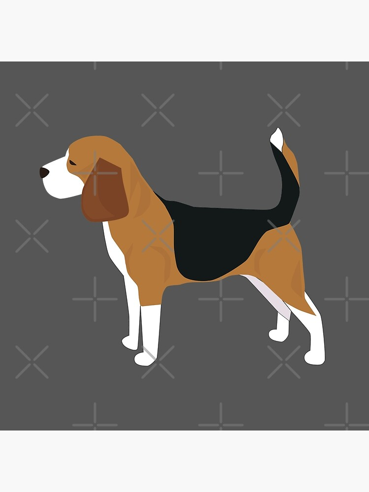 Beagle by Ashleylcoop