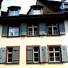 Shutters with stories by fourthangel