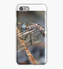 Anisoptera iPhone Case/Skin