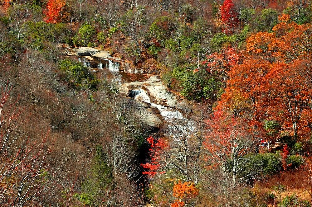 Upper Graveyard Falls, Blue Ridge Parkway, North Carolina by fauselr