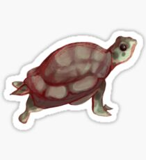 Turtle Sticker  Sticker