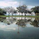 reflections I by guy natav