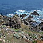 King Island Tasmania 1 by Pauline Tims