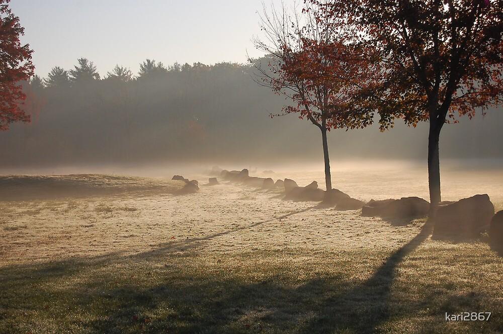 mist by kari2867