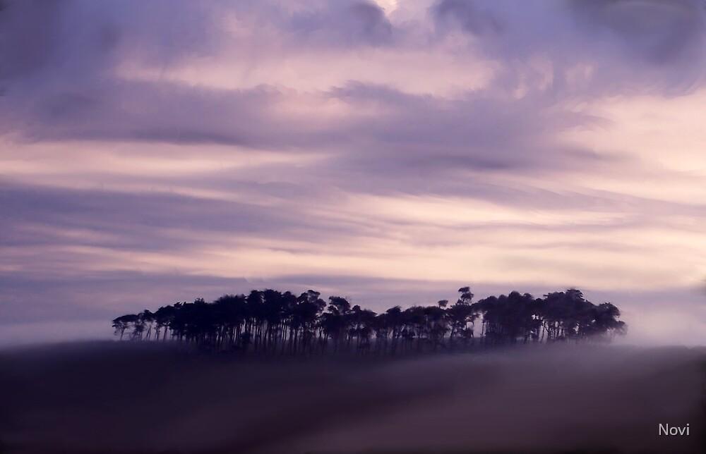 Silhouette by Novi