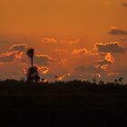 Grand Cayman Sunset - 17/11/07 by Allen Lucas