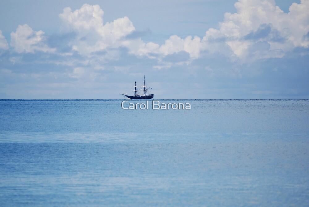 Pirates Of The Caribbean by Carol Barona