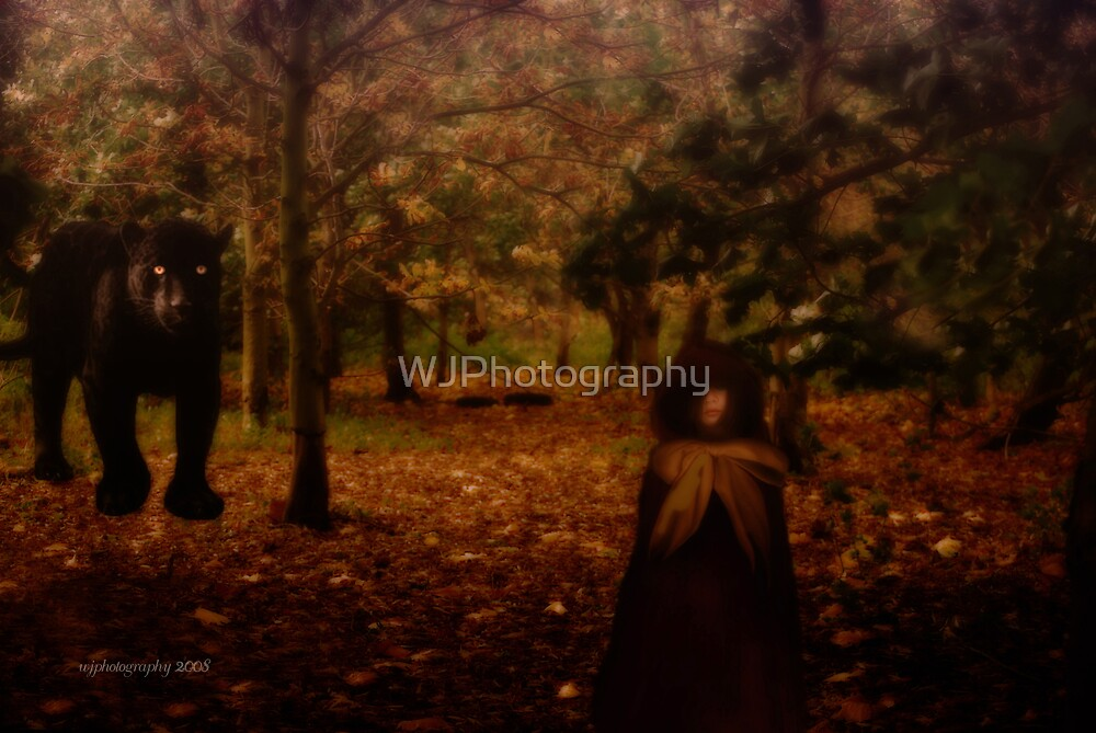 A Forest Encounter by WJPhotography