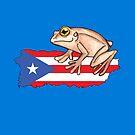 El Coqui de Puerto Rico by Bobby Langs