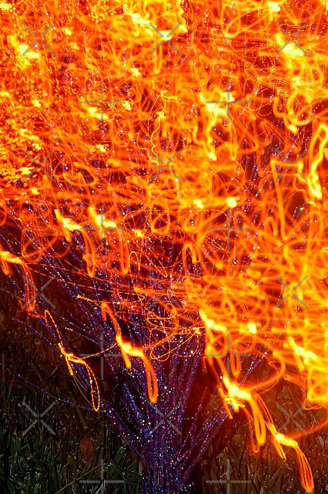 Burning Bush by Clayton Bruster