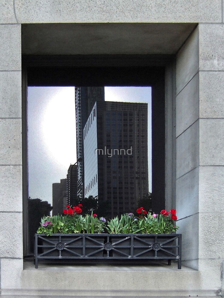 REFLECTION OF THE CITY by mlynnd