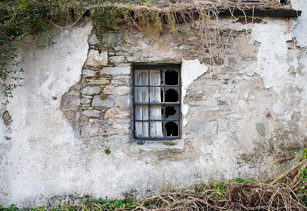 Kenmore Window by Jamie Buchanan