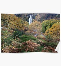 Powerscourt waterfall  Poster