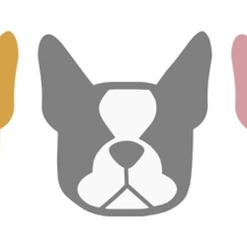 Boston Terriers in a row - multi colored Boston dogs: color series 2 by smooshfaceutd