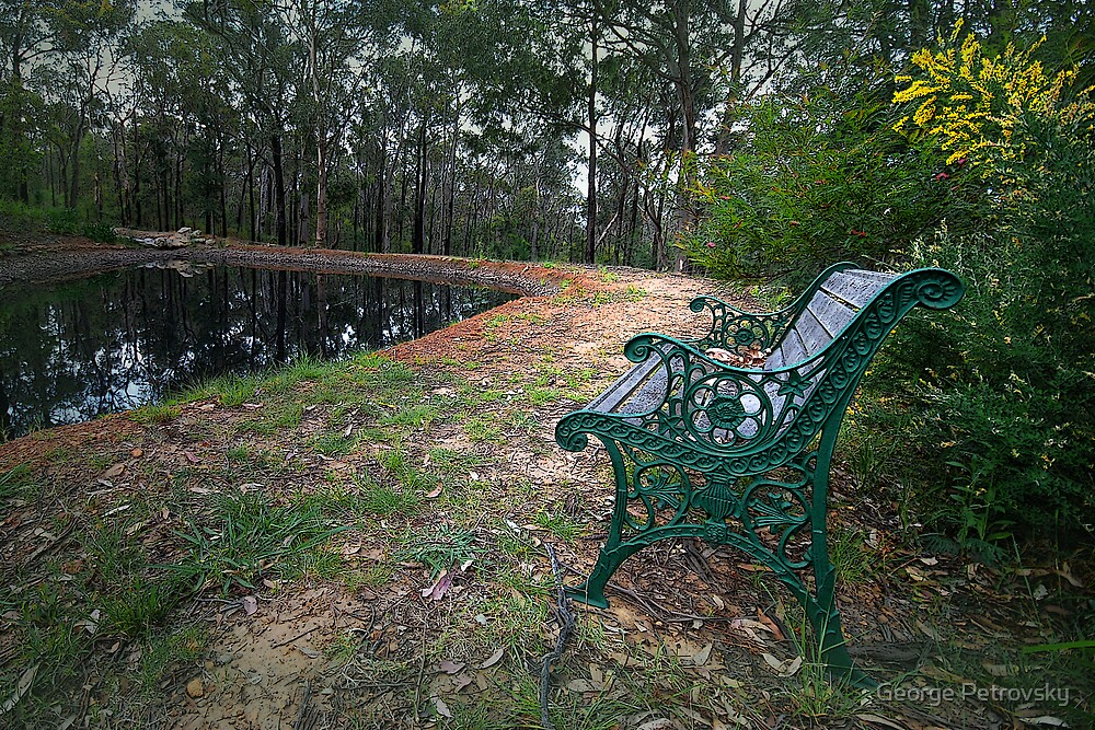 A Bench for Reflection by George Petrovsky