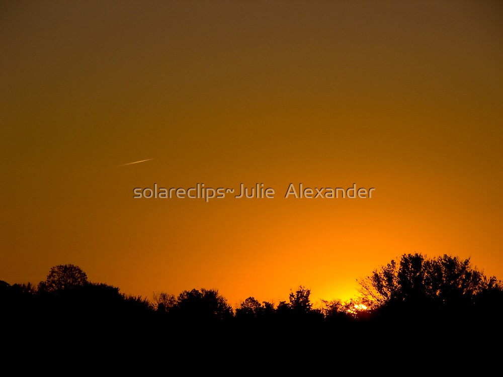 Sunny Skies Airliner by solareclips~Julie  Alexander