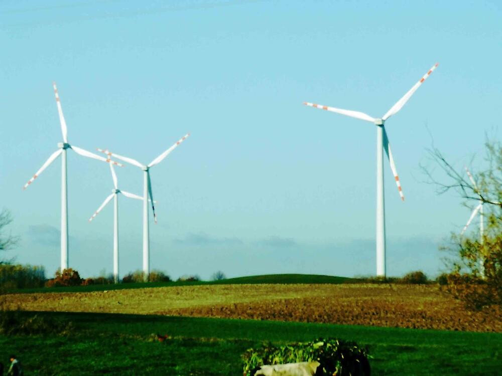 Windmills by panasonik