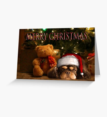 A DOG IS FOR LIFE NOT JUST FOR CHRISTMAS Greeting Card