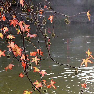 Fall beauty by agnessa38