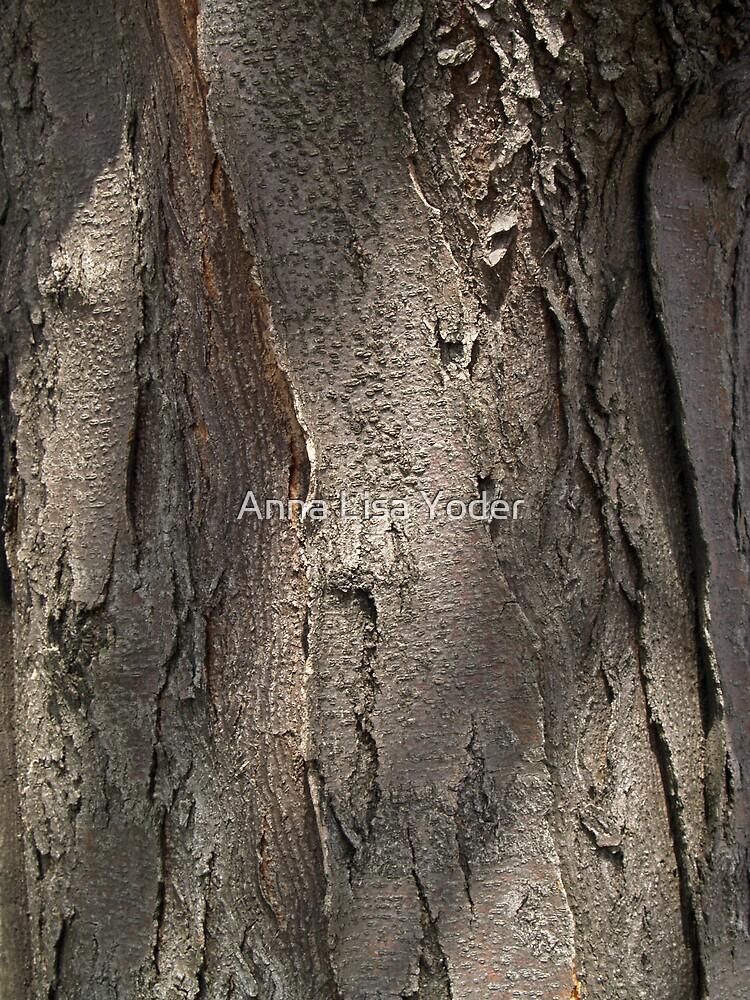 Quot Honey Locust Tree Bark Quot By Anna Lisa Yoder Redbubble