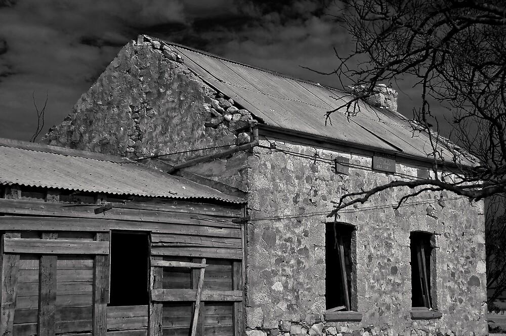 Old School Days by Shane Bolton