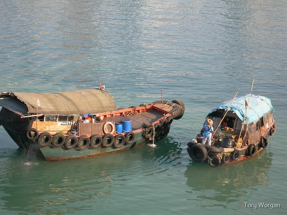Hong Kong Junk by toryworgan